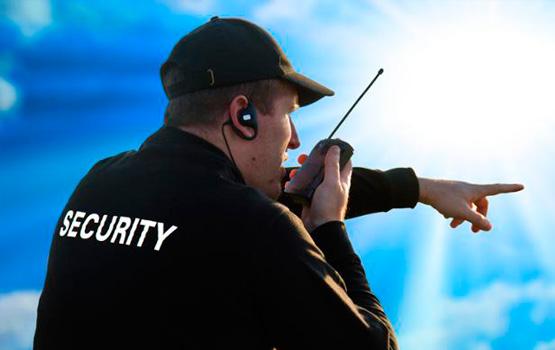 Seguridad activa